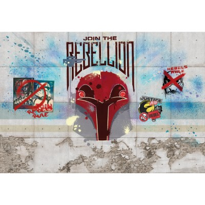 STARWARS Mur de la Rebellion